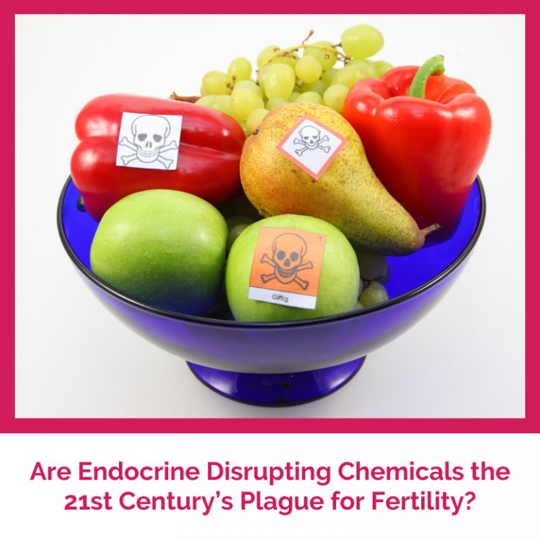 Are Endocrine Disrupting Chemicals the 21st Century's Plague for Fertility?