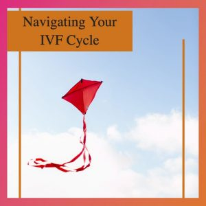 Navigating Your IVF Cycle